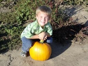 George's Perfect Pumpkin